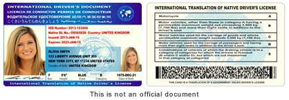 International Drivers License Card